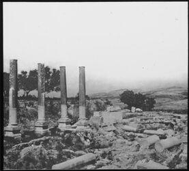 Glasplattendia Palästina Tell von Samaria [Sebastie]