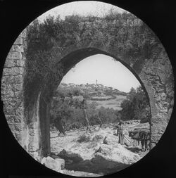 Glasplattendia Samaria [Sebastie] from the Shechem Road