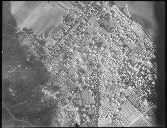Glasplattendia Haifa n. d. Kolonie v. S. 20/1 18 310