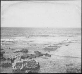 Glasplattendia Kesarie [Cäsarea], Nordmole 29 III 1909 Möller