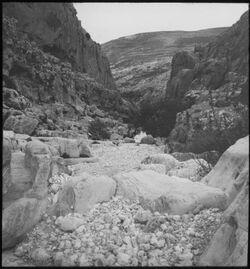 Glasplattendia Wadi fara v. W.. Frühj. 1908 Reym.