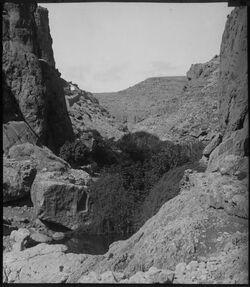 Glasplattendia w. [wadi] fara unterhalb d. R. Blick von W.