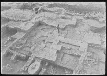 Glasplattendia Tell el-mutesellim [Megiddo], Brick-Stadttor, Stratum XIII