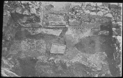 Glasplattendia Tell el-mutesellim [Megiddo], Raum 309 i mit Muschelpflaster, Stratum VIII-VIIB