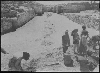 Glasplattendia Tell el-mutesellim [Megiddo], Auffahrt z. Tor, Stratum V A, oberer Teil