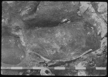 Glasplattendia Tell el-mutesellim [Megiddo], Wein- oder Ölpresse, Stratum VI A