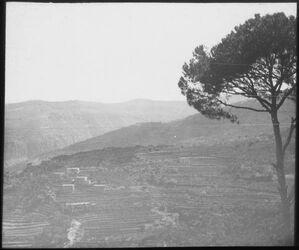 Glasplattendia Libanon, an der Bahn?