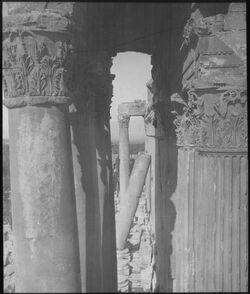 Glasplattendia Peristyl des Bachustempels, Ba