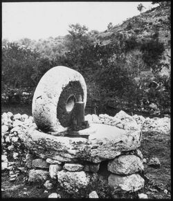 Glasplattendia Olivenmühle bei aglun