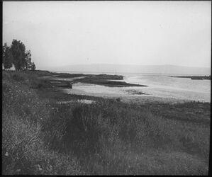 Glasplattendia Jordanmündung in d. See v. Tiberias [See Genezareth]