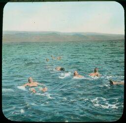 Glasplattendia Totes Meer v. Nordufer