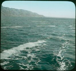 Glasplattendia Dead Sea, streaks of foam [Totes Meer]