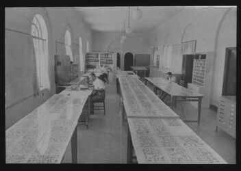 Glasplattendia Fragmente im Pal. Arch. Museum [Qumran-Funde]