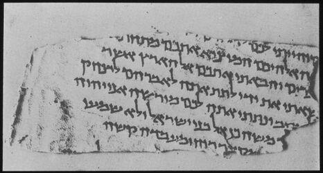 Glasplattendia Fragment v. W. Murabba