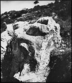 Glasplattendia Untersatz v. Stelen mit Löwenrelief umm el- ammad [Umm el amad]