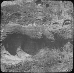 Glasplattendia Löwe Nr. 254 el-farasa [Petra]