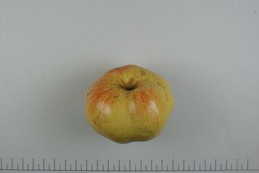 Wagener-Apfel